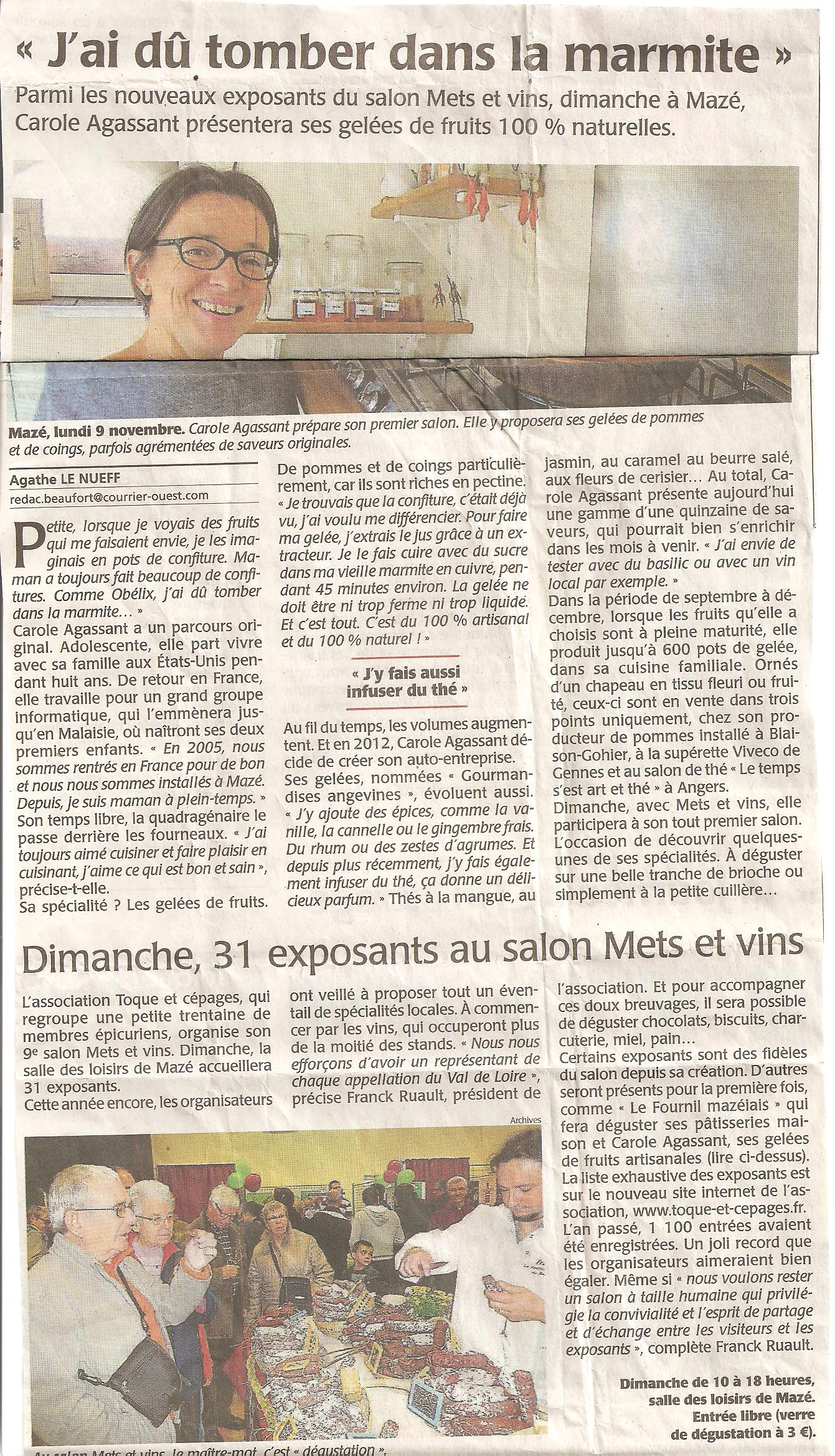 2015 article pré-salon